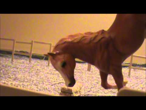 'Love at First Sight' - Part 1 (Breyer horse movie)