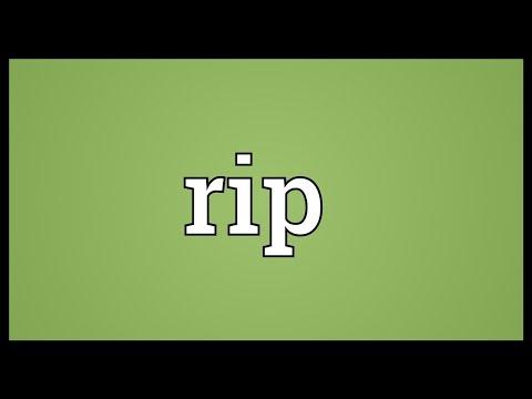 What is rip – buzzpls.Com
