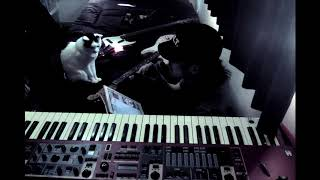 """The experiment to arrange japanese pop song """"STAY TUNE"""" by Suchmos ..."""