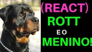 (REACT) ROTTWEILER E O MENINO - ISSO NÃO DEVIA TER ACONTECIDO!