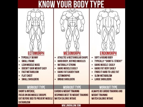Ectomorph Body Type Fitness Program How To Get Big When You Are Skinny Ectomorph Fitness