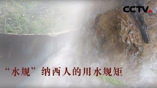 [中华优秀传统文化]纳西人的用水规距| CCTV中文国际