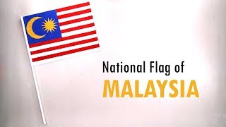 How to Make the National Flag of Malaysia | DIY School Project | Malaysia Flag Making