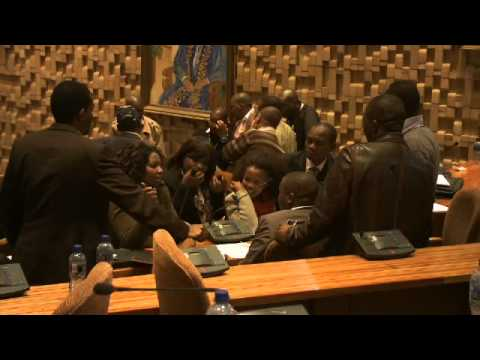 What is the Thabo Mbeki African Leadership Institute -TMALI
