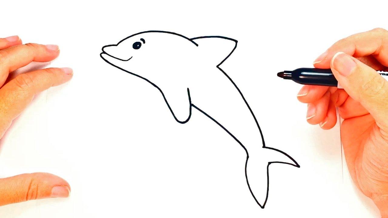C mo dibujar un delf n paso a paso dibujo f cil de for Sillas para dibujar facil