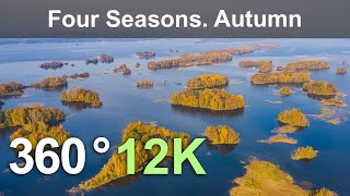 Four Seasons. Autumn Forest. Relax Flight in 360 format, 12K resolution