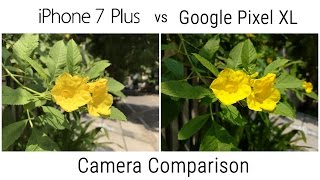 Our Detailed Camera Comparison of the Google Pixel XL vs Apple iPho...