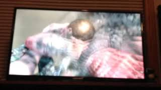 Nasty death scenes on Call of Duty 2