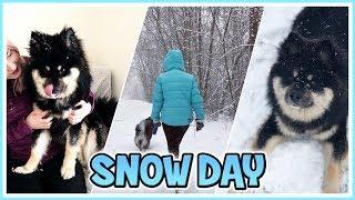 A Snowy Vlog!