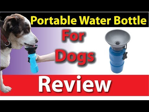 HIGHWAVE AutoDogMug - Portable Water Bottle For Dogs Review - -Pickatop