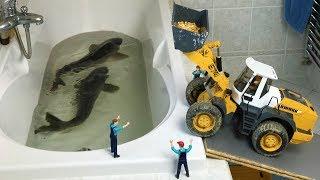 BRUDER TOYS vs. REAL FISH feeding action!