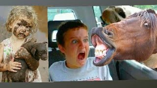 Try Not To Laugh Funny Baby and Animal Fails