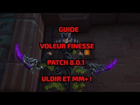 GUIDE VOLEUR FINESSE ULDIR ET MM+