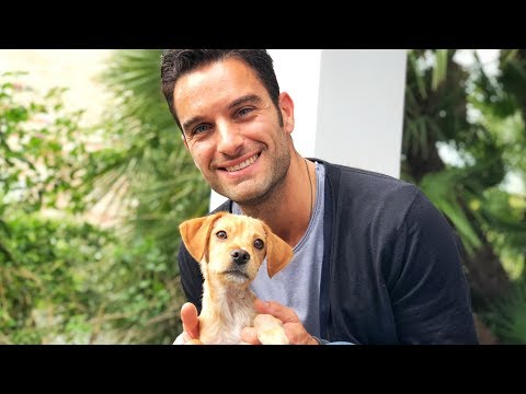 AMAZING guy travels the world to join puppy he met on the internet