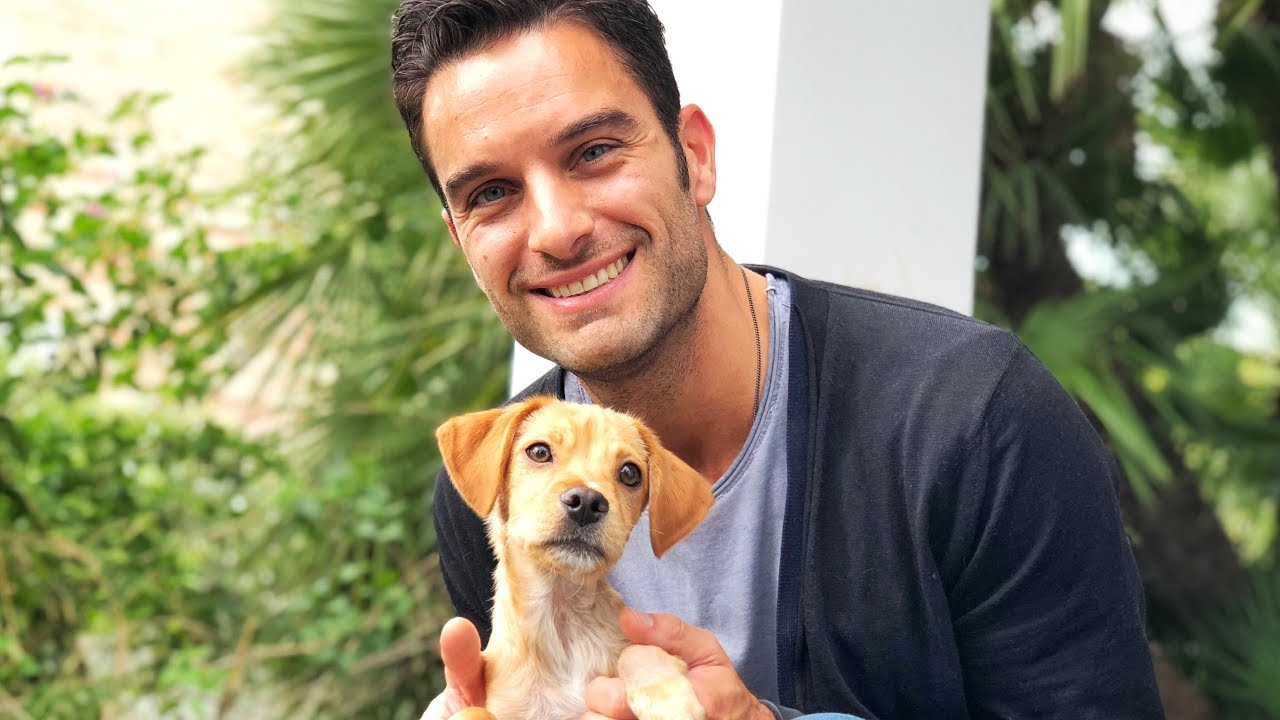 amazing-guy-travels-the-world-to-join-puppy-he-met-on-the-internet