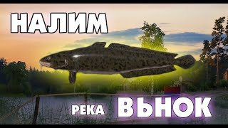 НАЛИМ НА р ВЬЮНОК RUSSIAN FISHING 4 РУССКАЯ РЫБАЛКА