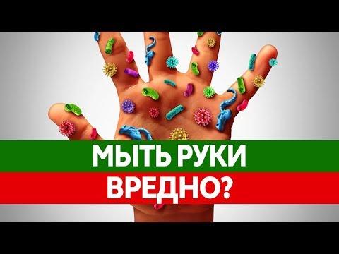 Рука — Википедия