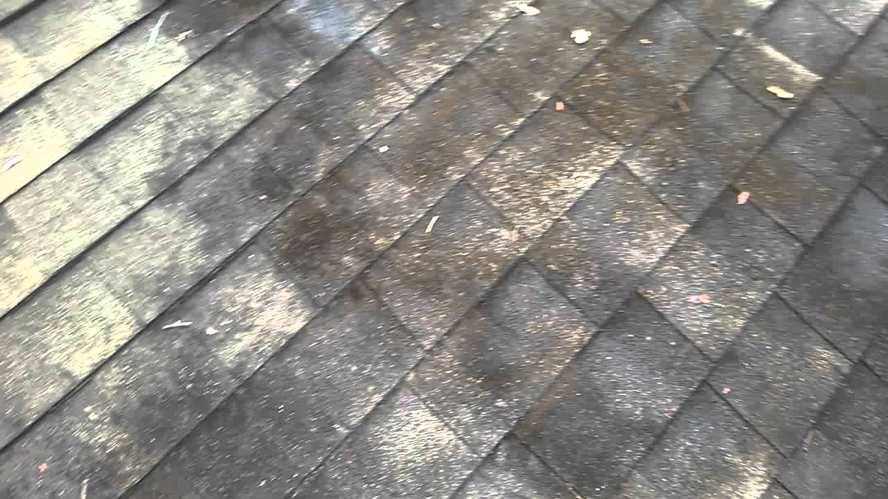 Beautiful Wet And Forget   Roof Mildew WP 20151013 001