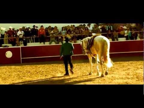 El Chapo de Sinaloa - Recostada en la cama (En Vivo)