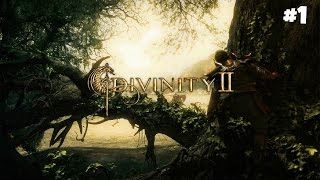 Divinity II: Developer's Cut - Прохождение #1: Следопыт охотник