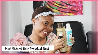 Mini Natural Hair Product  Haul