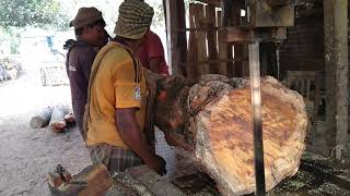 Crocked Wood of Mehogani Cutting to Smart Shape by Expert Workers in Saw Mill of Rural Area of BD