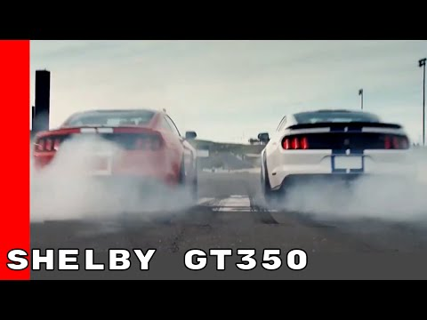 2017 Ford Mustang Shelby GT350 On Racetrack & Street