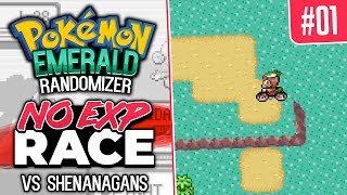 No EXP Randomizer Race vs Shenanagans   Pokemon Emerald #1