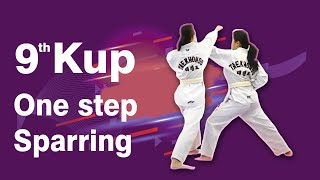 9th Kup Yellow Tag One Step Sparring