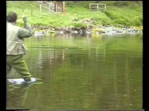 Tweed Dry Fly. David Norwich Fishing A Hatch Of Dark Olives.