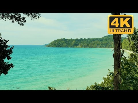 Ocean Bay Nature Relaxation  in 4K