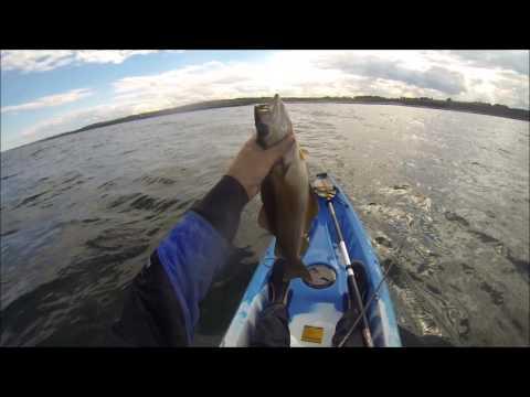 Scottish Kayak Fishing  Part 46  Fair Swell At Berwick  13th July 2016