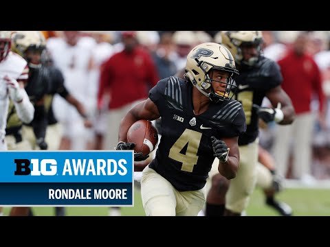 2018 Big Ten Freshman of the Year & Receiver of the Year: Purdue's Rondale Moore | Big Ten Football