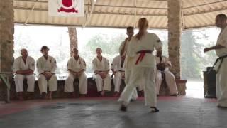 Kumite Karate Camp