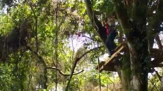 Monkey Flight 樹冠層探險