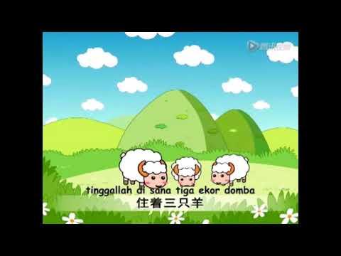 Cerita Anak Mandarin - Tiga Ekor Domba