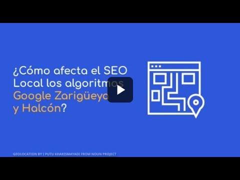 ¿Cómo afecta el SEO Local los algoritmos Google Zarigüeya y Halcón?