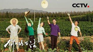 《你好生活》第二季 20201209 一亩幸福(网络版) CCTV综艺 - YouTube