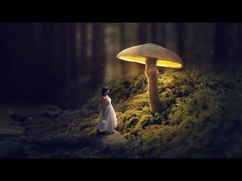 Glowing Mushroom - Photoshop Fantasy Manipulation Tutorial