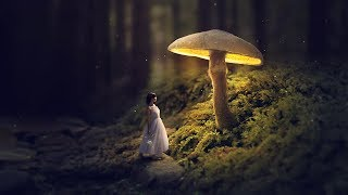 Glowing Mushroom - Photoshop Fantasy Manipulation Tutorial