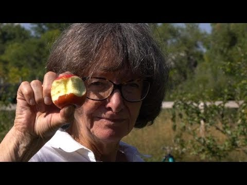 Food Forests - Farm to Fork Wyoming