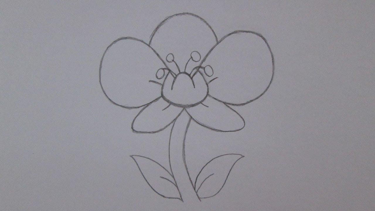 Cómo dibujar una flor de la orquídea - YouTube
