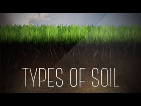 Soil types of soil and percolation rate of water in soil for Words for soil