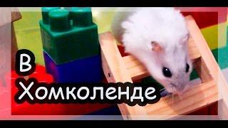 Соня, Попрыгунчик и Семечка в диснейленде )