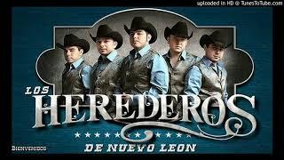 LOS HEREDEROS DE NUEVO LEON MIX - EXITOS NORTEÑOS