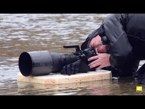 Nikon D5 - Five inspired professional photographers with the D5