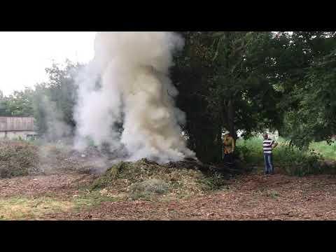 РИА Мелитополь: В Мелитополе в парке работают спасатели