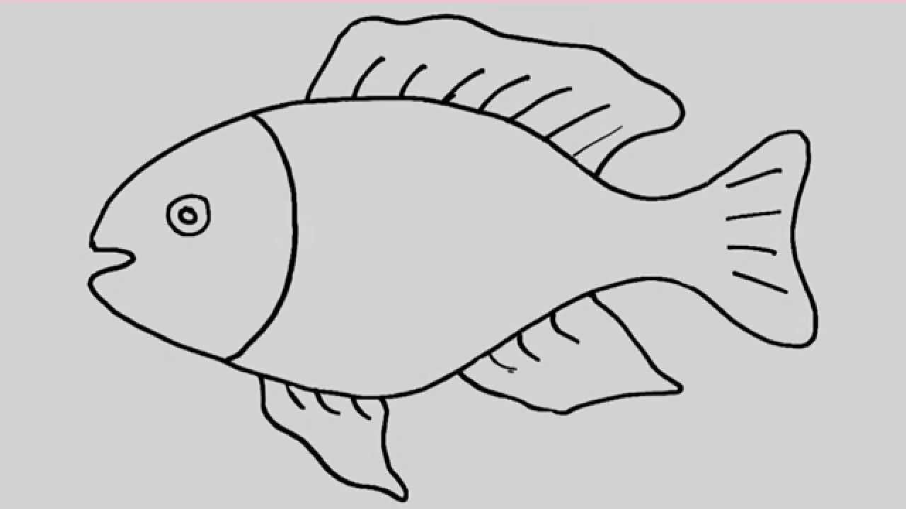 How to draw a fish animation and entertainment for kids youtube