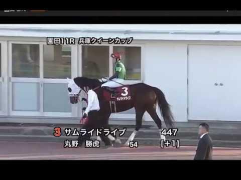 園田競馬】兵庫クイーンカップ20...