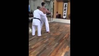 Bogdan Kurilko. Morio Higaonna Sanchin Shime
